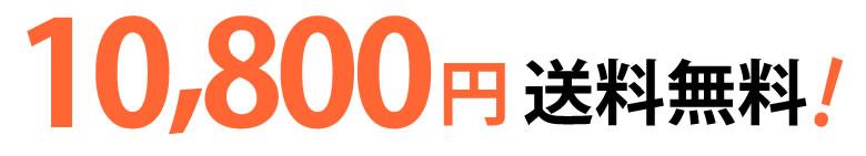 アレンジバルーン ラーラ~ガーデンウェディング~(バルーン電報)
